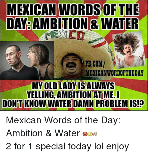 Lol, fb.com, and Today: MEICAN WORDS OF THE DAY AMBITION 8