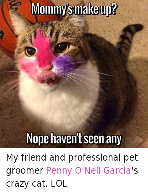 Mommy Make Up Nope Havent Any My Friend And Professional Pet