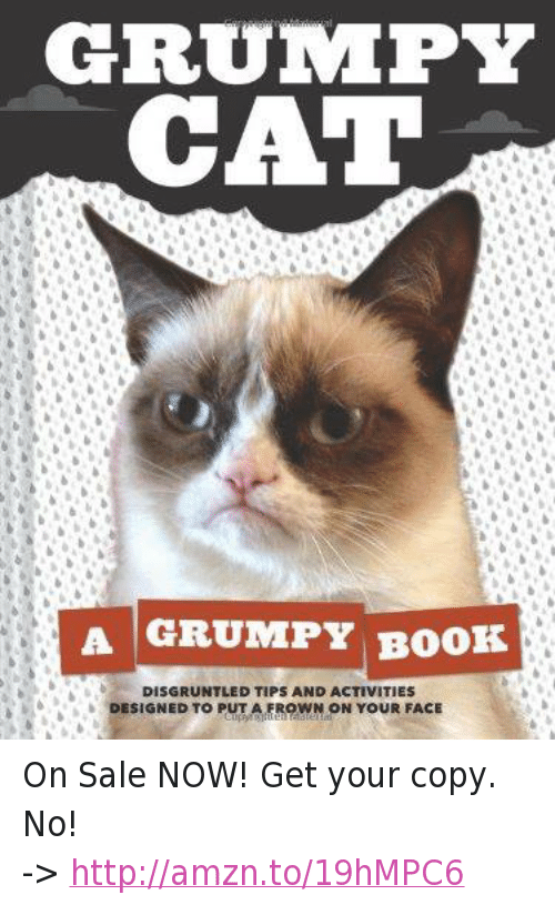 how to get a grumpy cat