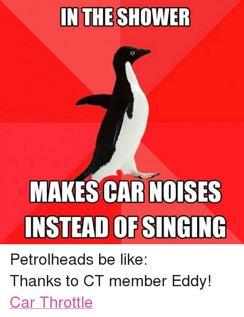 In THE SHOWER MAKES CAR NOISES INSTEAD OF SINGING