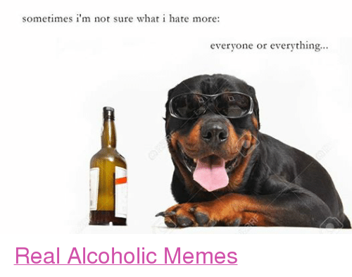 Meme, Memes, and Alcohol: sometimes i'm not sure what i hate more:  everyone or everything... Real Alcoholic Memes