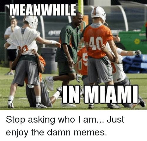 Facebook Stop asking who I am Just f59584 meanwhile in miami stop asking who i am just enjoy the damn memes