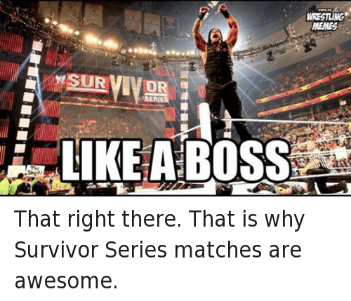 Meme, Memes, and Wrestling: SURVIVOR  WRESTLING  MEMES That right there. That is why Survivor Series matches are awesome.