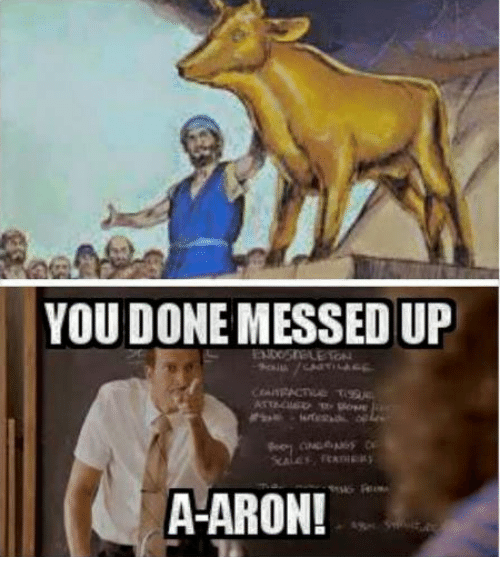 Messed Up Life Quotes: 25+ Best Memes About A Aron
