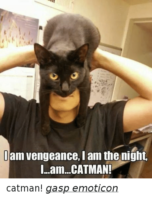 Grumpy Cat, Catman, and Gasp: am vengeance, I am the night.  I...am...CATMAN! catman! gasp emoticon