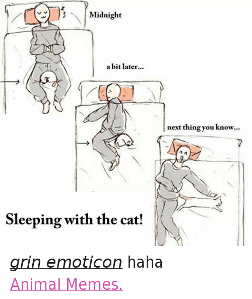 Animals, Anime, and Cats: Midnight  a bit later  Sleeping with the cat!  next thing you know... grin emoticon haha  Animal Memes.