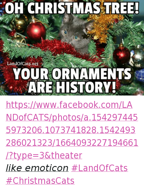 Christmas, Facebook, and Grumpy Cat: OH CHRISTMAS TREE! Landofoats.net ARE - OH CHRISTMAS TREE! Landofoatsnet ARE HISTORY