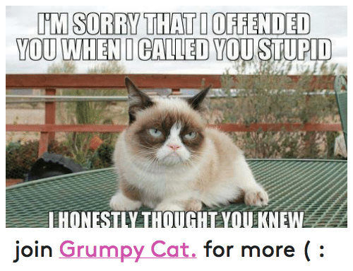 Grumpy Cats