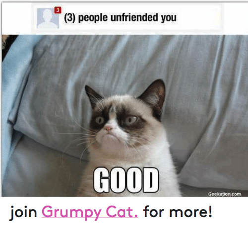 Facebook join Grumpy Cat for more 70e1c1 25 best how are you doing memes are memes, you good memes, the