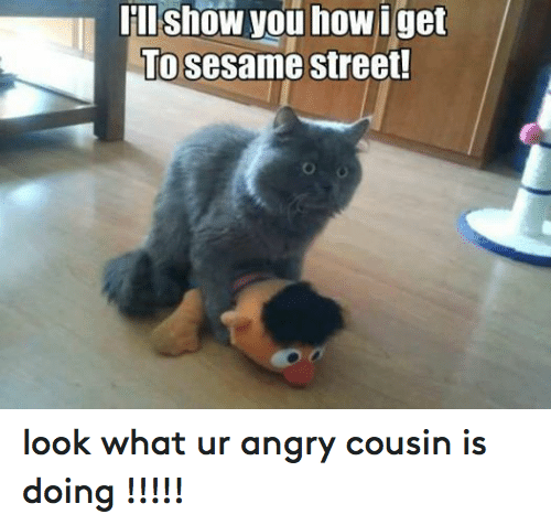 Show You How Get To Sesame Street Look What Ur Angry Cousin Is