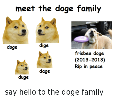 Facebook say hello to the doge family 1a4648 meet the doge family dige doge frisbee doge 2013 2013 rip in peace 3
