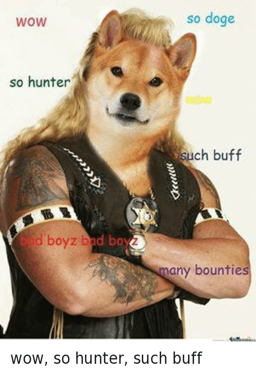 Facebook wow so hunter such buff e5cfd2 ✅ 25 best memes about so doge so doge memes,So Much Wow Meme