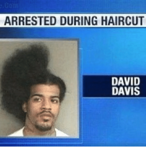 Funny, Haircut, and Haircuts: ARRESTED DURING HAIRCUT  DAVID  DAVIS