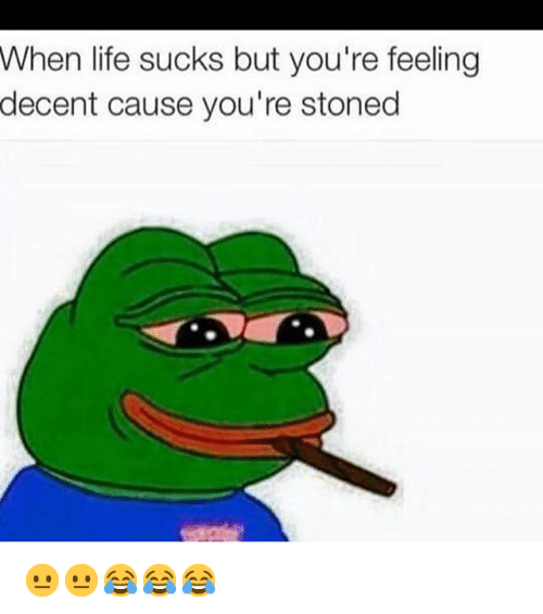 Life Mood And Pepe The Frog When Sucks But Youre