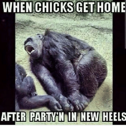 Instagram 36774c - Free funny after party photos