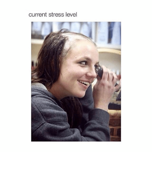 Funny Meme About Stress : Current stress level ⠀ funny meme on me