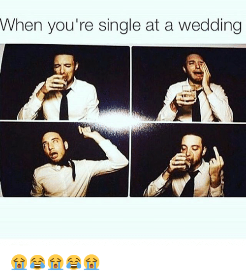 Engineering, Wedding, and Singles: When you're single at a wedding 😭😂😭😂😭