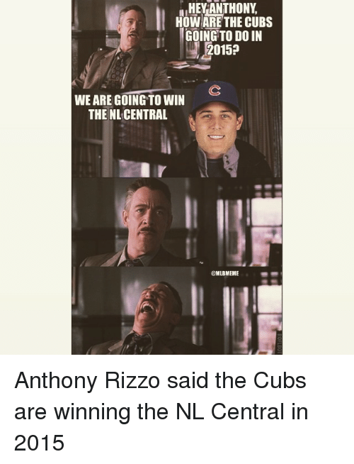 Mlb, Cubs, and Anthony Rizzo: HEY ANTHONY  HOW ARE THE CUBS  GOING TO DOIN  2015a  WE ARE GOING TO WIN  THE NL CENTRAL  CMLBMEME Anthony Rizzo said the Cubs are winning the NL Central in 2015