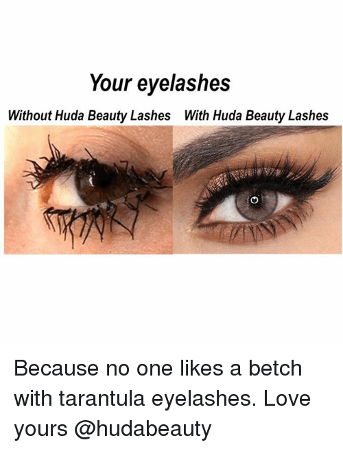 Beautiful, Love, and Girl Memes: Your eyelashes  Without Huda Beauty Lashes With Huda Beauty Lashes Because no one likes a betch with tarantula eyelashes. Love yours @hudabeauty
