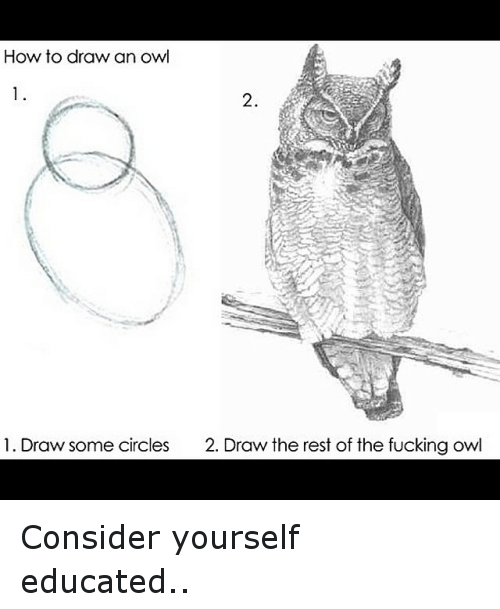 How To Draw An Owl 2 1 Draw Some Circles 2 Draw The Rest Of The