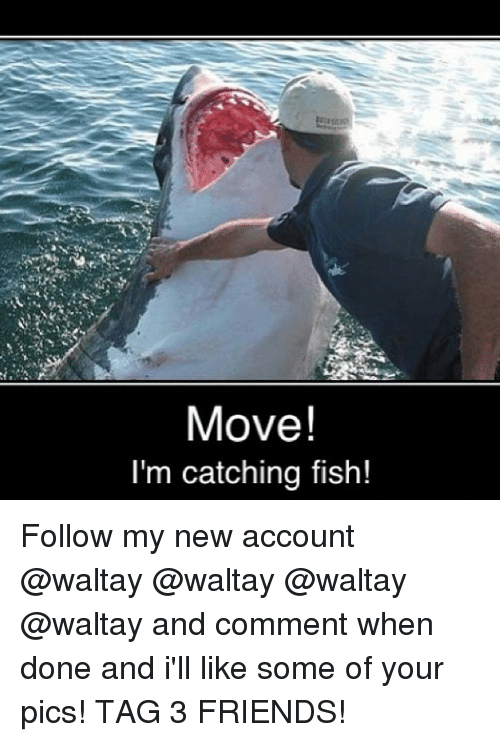 Move Im Catching Fish Follow My New Account And Comment When Done