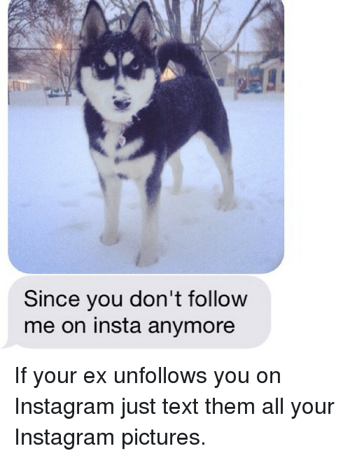 Since You Don't Follow Me on Insta Anymore if Your Ex