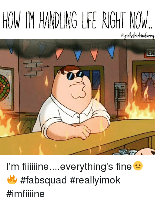 Download Im Fine Everything Is Fine Meme   PNG & GIF BASE