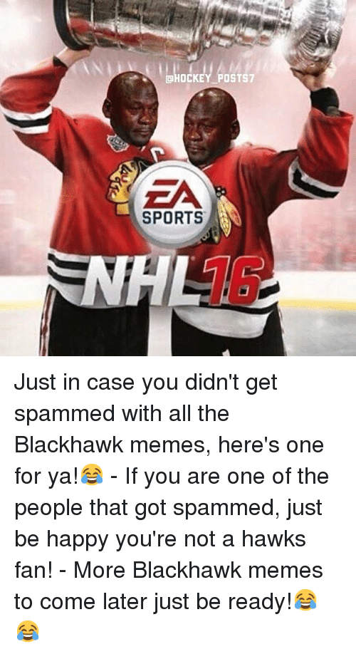 Blackhawks, Meme, and Memes: CHOCKEY POSTS  SPORTS Just in case you didn't get spammed with all the Blackhawk memes, here's one for ya!😂 -If you are one of the people that got spammed, just be happy you're not a hawks fan! -More Blackhawk memes to come later just be ready!😂😂