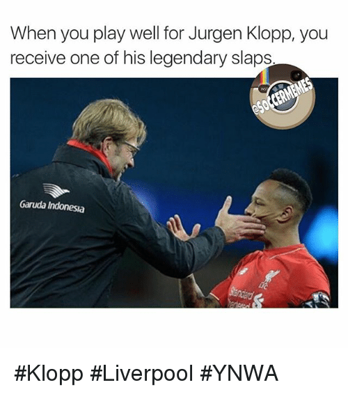 Best 25 Liverpool Memes Ideas On Pinterest: 25+ Best Jurgen Klopp Memes