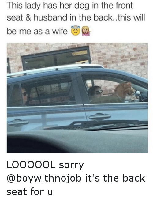 dogs funny and sorry this lady has her dog in the front seat