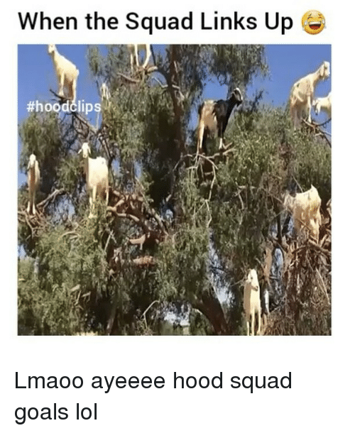 Funny, Goals, and Lol: When the Squad Links Up  Lmaoo ayeeee hood squad goals lol