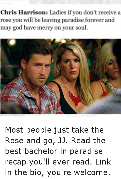 Funny, God, and Paradise: Chris Harrison: Ladies if you don't receive a  rose you will be leaving paradise forever and  may god have mercy on your soul. Most people just take the Rose and go, JJ. Read the best bachelor in paradise recap you'll ever read. Link in the bio, you're welcome.