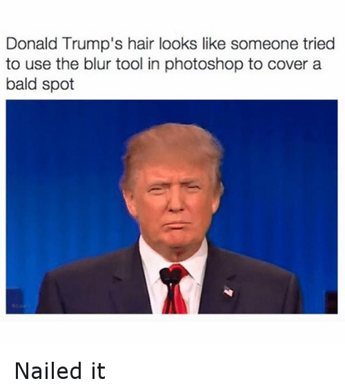 Donald Trump, Funny, and Photoshop: Donald Trump's hair looks like someone tried  to use the blur tool in photoshop to cover a  bald spot Nailed it