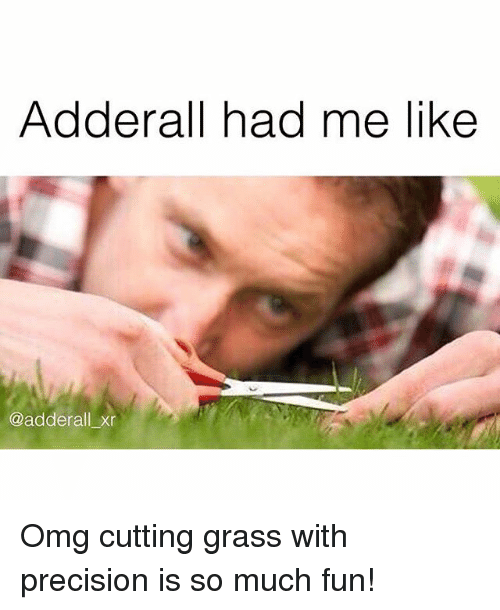 Instagram Omg cutting grass with precision is 1213bf ✅ 25 best memes about adderall adderall memes,Adderall Meme