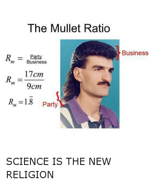 The Mullet Ratio R Party Business 17cm 9cm R 18 Party Business Science Is The New Religion