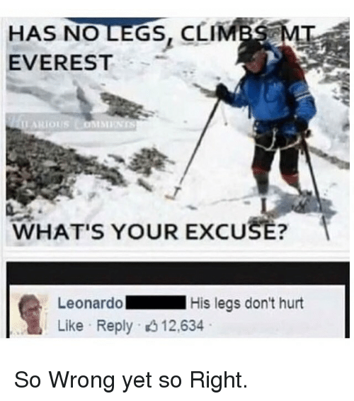 Whats Your Excuse