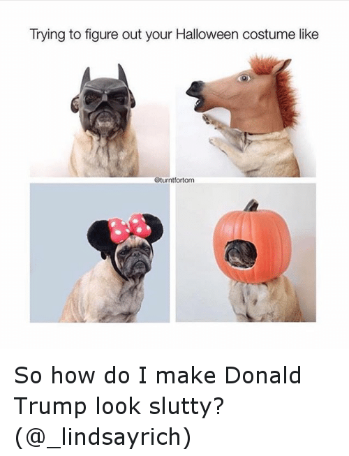 Donald Trump, Funny, and Halloween: Trying to figure out your Halloween costume like  @turnt fortom So how do I make Donald Trump look slutty? (@_lindsayrich)