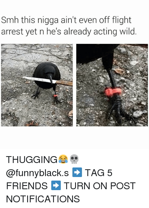 Friends, Smh, and Flight: Smh this nigga ain't even off flight  arrest yet n he's already acting wild THUGGING😂💀 @funnyblack.s-➡️ TAG 5 FRIENDS-➡️ TURN ON POST NOTIFICATIONS