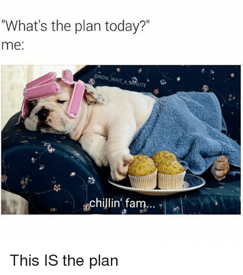 Whats The Plan