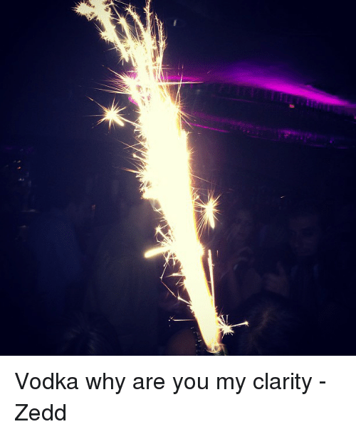 Vodka Zedd And Memes Why Are You My Clarity