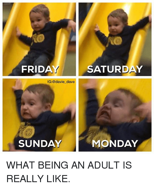 Being an Adult, Funny, and Mondays: FRIDA  IG:@davie dave  SUNDAY  SATURDAY  MONDAY WHAT BEING AN ADULT IS REALLY LIKE.