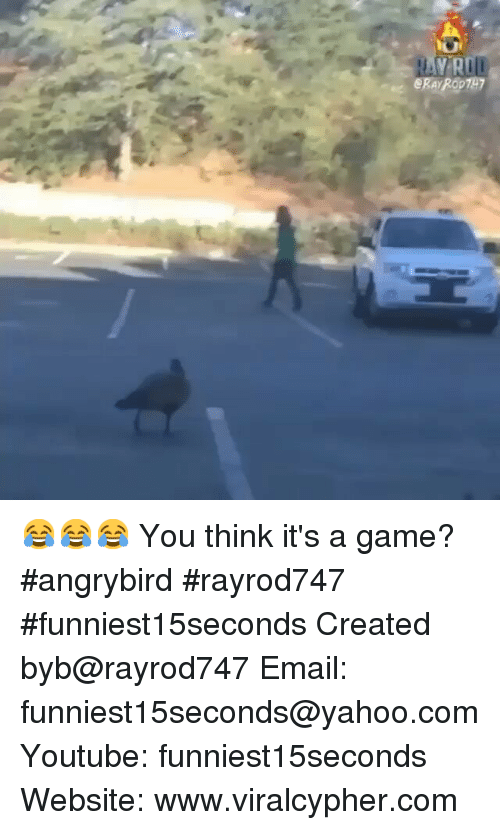 Funny, Email, and Game: U  e ERARODTH7  eR  R 😂😂😂 You think it's a game? angrybird rayrod747 funniest15seconds-Created byb@rayrod747-Email: funniest15seconds@yahoo.com-Youtube: funniest15seconds-Website: www.viralcypher.com