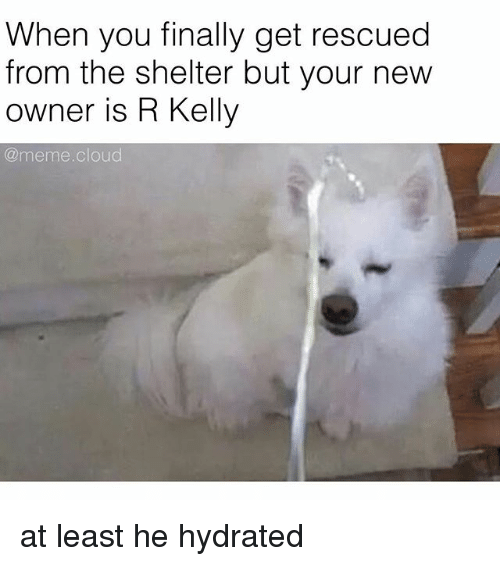 Kelly Meme