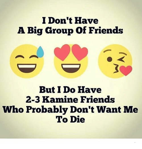 I Don 39 T Have A Big Group Of Friends But I Do Have 2 3