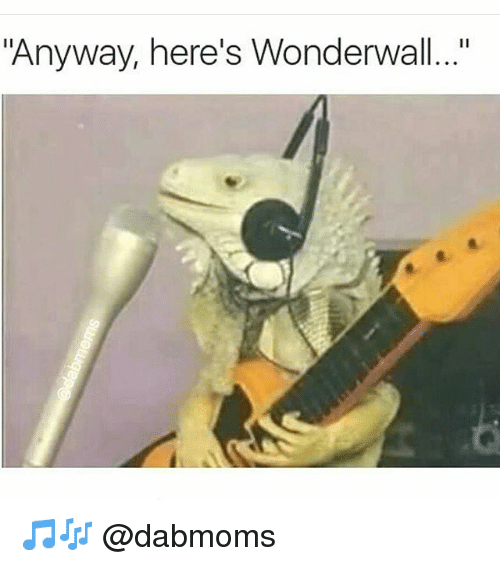 "Wonderwall, Dank Memes, and Anyway Here's Wonderwall: ""Anyway, here's Wonderwall..."" 🎵🎶 @dabmoms"