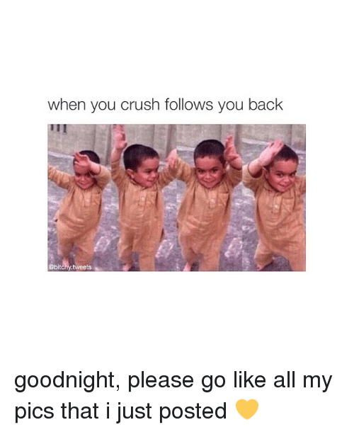 When You Crush Follows You Back Tweets Goodnight Please Go