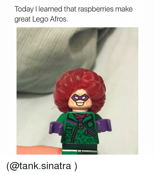 Funny, Lego, and Meme: Today I learned that raspberries make  great Lego Afros. (@tank.sinatra )