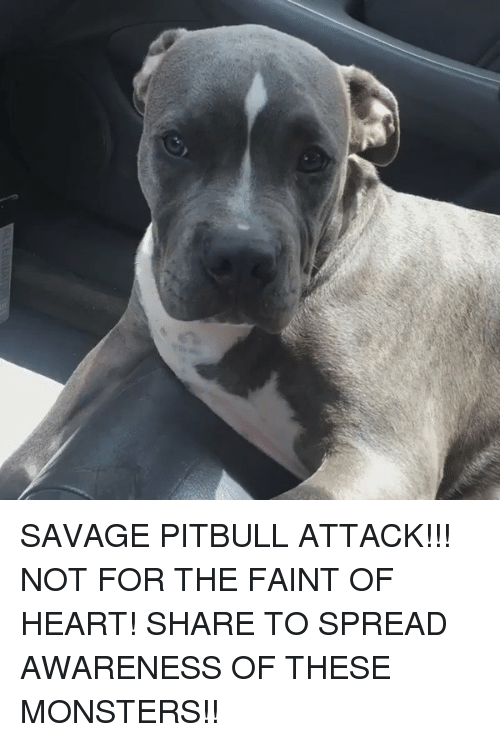 Savage Pitbull
