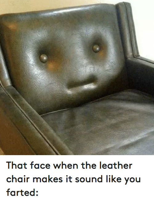 Cool That Face When The Leather Chair Makes It Sound Like You Machost Co Dining Chair Design Ideas Machostcouk