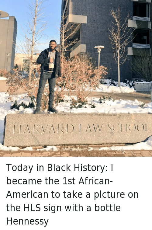 Black History Month, Blackpeopletwitter, and Hennessy: Today in Black History: I became the 1st African-American to take a picture on the HLS sign with a bottle Hennessy   HARVARD LAW SCHOOL Today in Black History: I became the 1st African-American to take a picture on the HLS sign with a bottle Hennessy